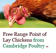 Free Range Point of Lay Chickens from Cambridge Poultry - click here