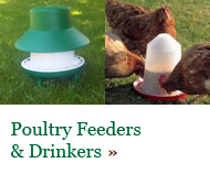 Poultry Feeders & Drinkers from Cambridge Poultry - click here